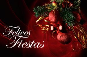 Feliz-Navidad-Fiesta